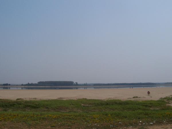 Дунавски плаж с. Кошава, Видинско, снимка 01